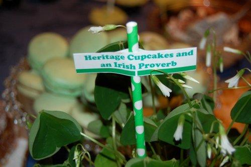 Irish proverbs and cupcakes